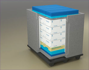 Cooler Cold Chain Packaging Box With EPP